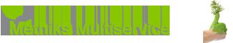 Metnik's Multiservice IVS logo